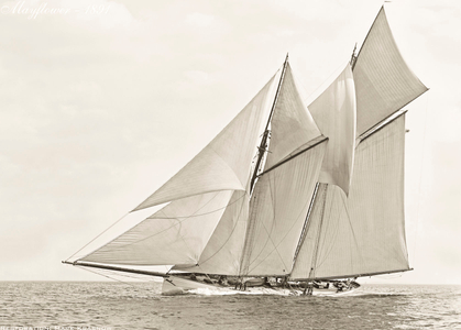 Schooner Mayflower -1891 - Vintage Sailing Art Print Restoration