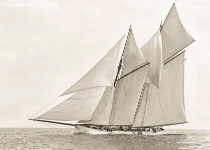 Schooner Mayflower -1891 - Vintage Sailing Art Print Restoration