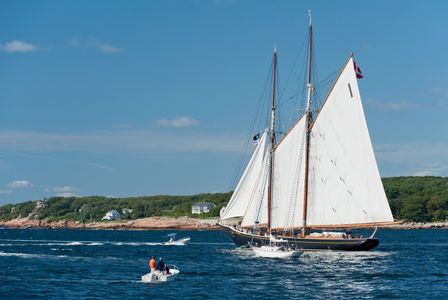 Schooner Bluenose II in Gloucester, Massachusetts art print