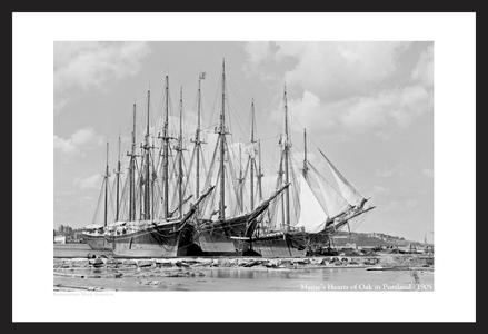 Historic Sailboat Art Prints - Maine's Hearts of Oak - 1905