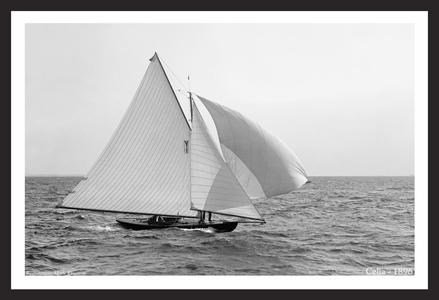 Celia - 1896 - Vintage Sailing Restoration Art Print