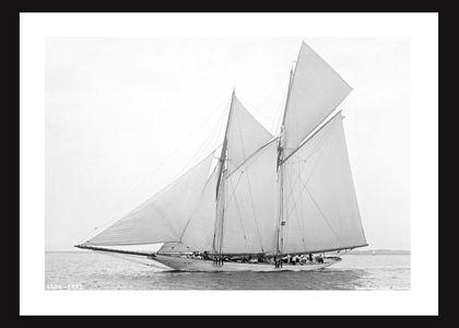 Alcea - 1892 - Vintage Sailing Restoration Art Print