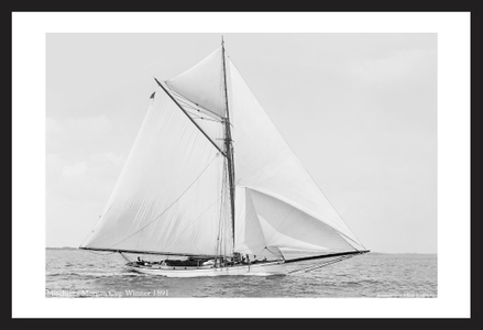 Historic Sailing art print photo restorations - Mischief - Morgan Cup Winner 1891