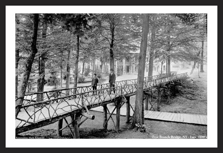 Tree Branch Bridge - NY - Late 1800s
