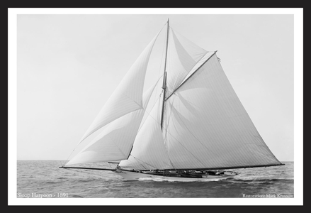 Americas Cup - Sloop Harpoon - 1891 - Art Prints  for Home & Office Interiors