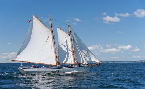 Schooner American Eagle sailing at Gloucester Parade of Sail