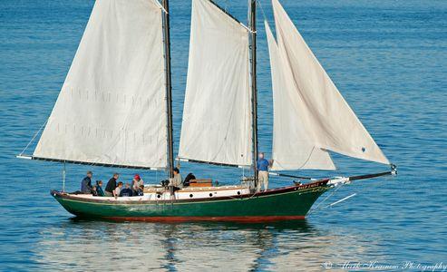 The Schooner Bald Eagle Sailboat Art print