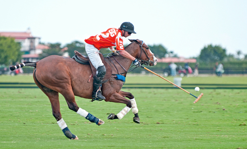 Professional Polo match at Wellington Polo Grounds Florida