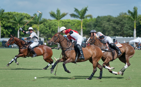 U.S. Open Polo Match in Wellington FL