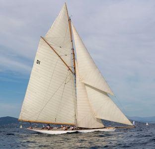 Mariska - Fife 15 Meter Classic - D1