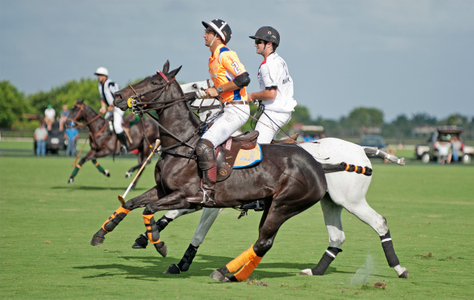 Polo at the U.S. Open in Wellington FL