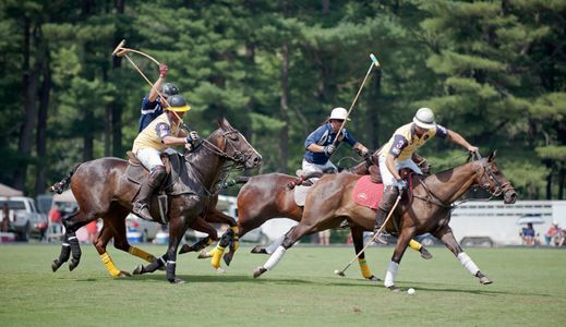 Polo match at Myopia polo grounds in Wenham, MA