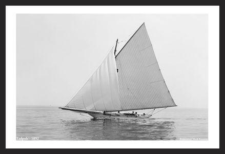 Tadpole 1892 - Vintage Sailboat art print restoration for Interior Design