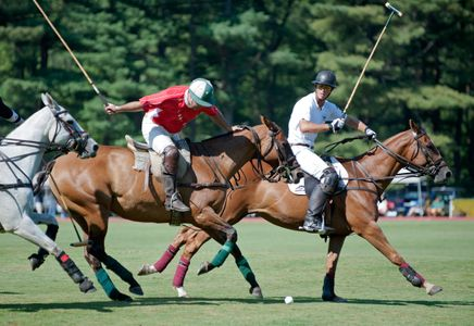 Polo at Myopia in Wenham, MA