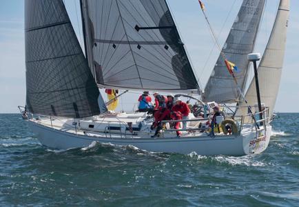 Shazaam at the Newport to Bermuda Start 2016