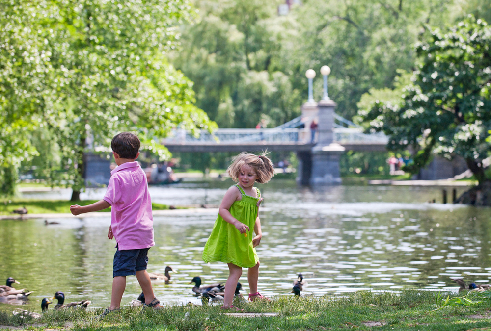 Children feedng duks at Boston Public Garden