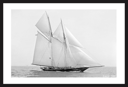 Schooner Lasca -1892  - Vintage sailing photography art print restoration