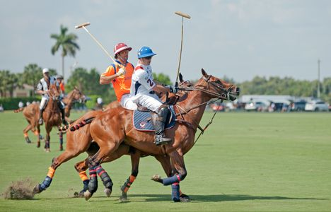 Professional Polo match in Wellington, FL