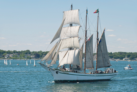 Gazela at Newport Parade of Sail