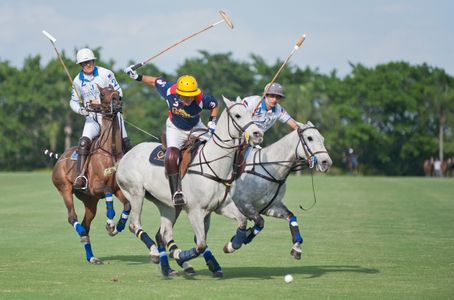 Professional Polo match in Wellington, Florida