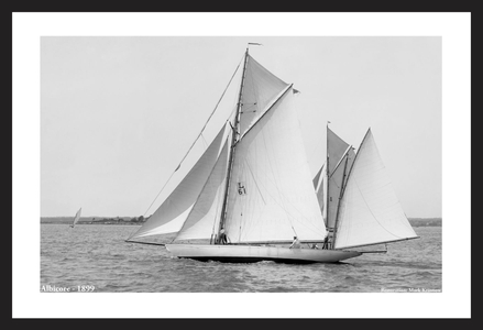 Vintage Sailboats - Albicore - 1899 - Art Prints  for Home & Office Interiors