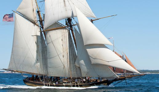 Schooners Pride of Baltimore II  art print