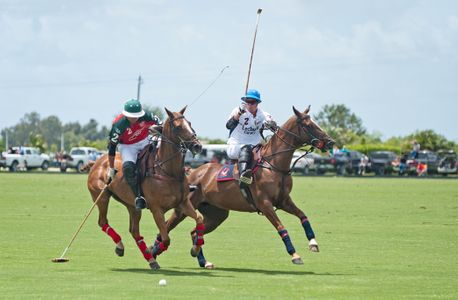 Polo action at the U.S. Open in Wellington FL