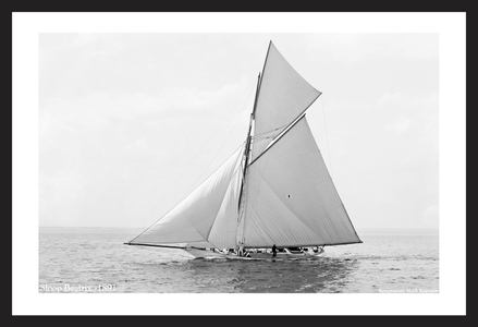 Vintage Sailboats - Sloop Beatrix - 1891 - Art Prints  for Home & Office Interiors