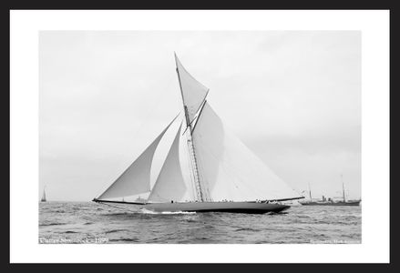 Classic America's Cup - Historic Sailing Photo Restoration art prints - Shamrock - 1899