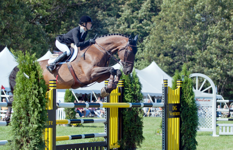 Professional Jumping competition photography art print