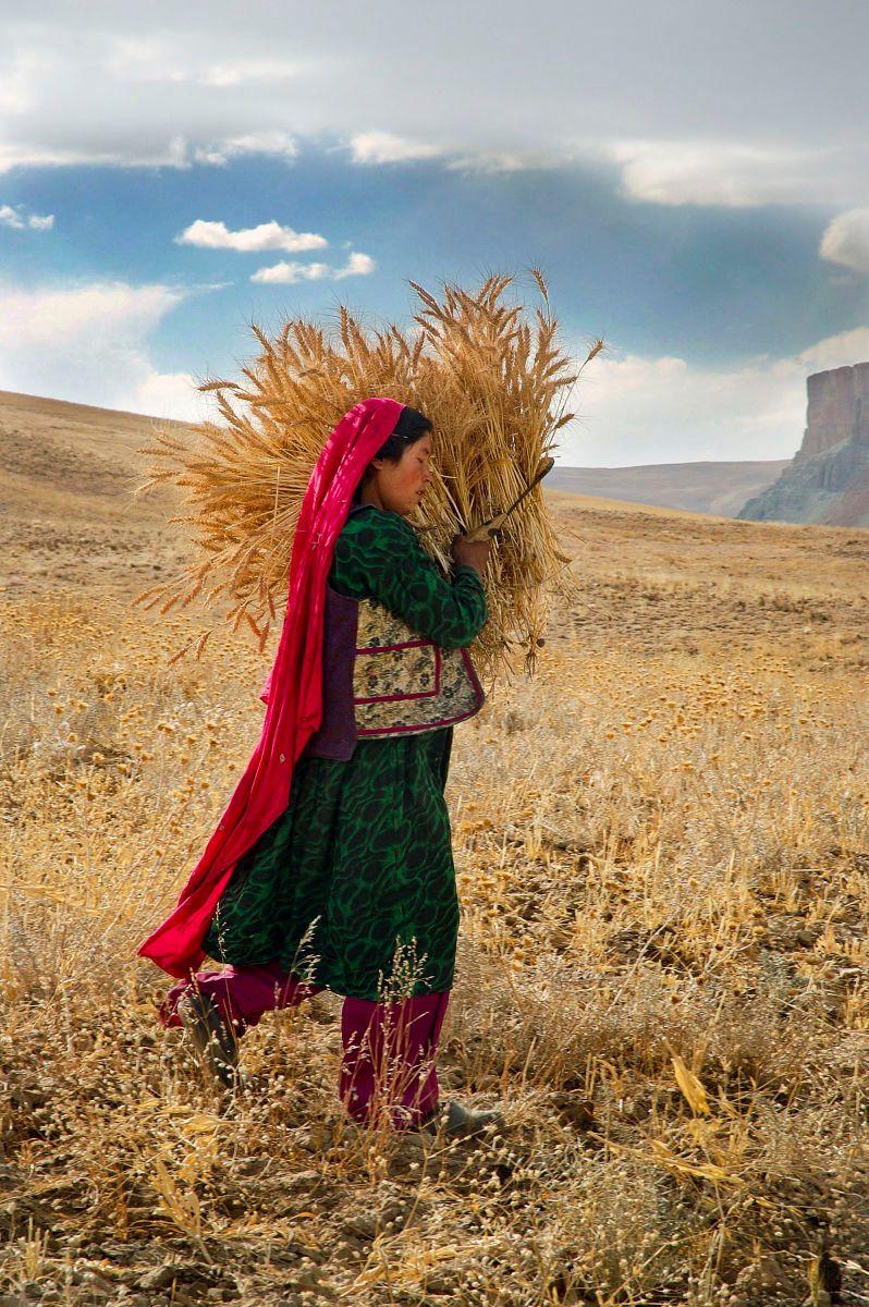 Bamyan, Afghanistan. 2006