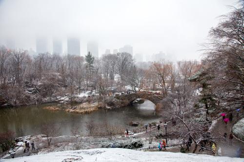 Central Park-279-2.jpg
