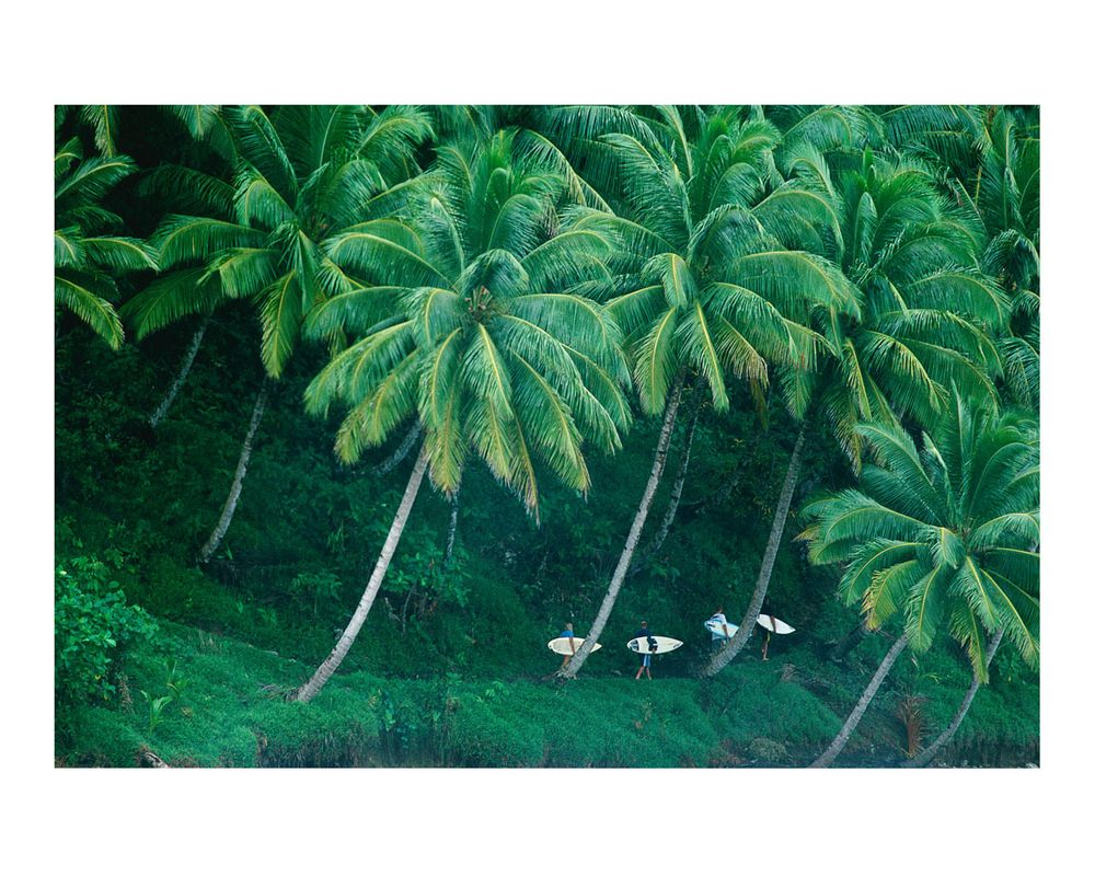 E BAY, MENTAWAI'S, SUMATRA, INDONESIA. 2001