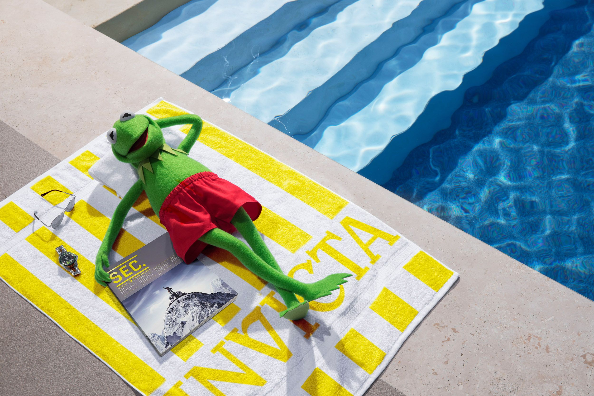 Kermit Handdoek Final.JPG