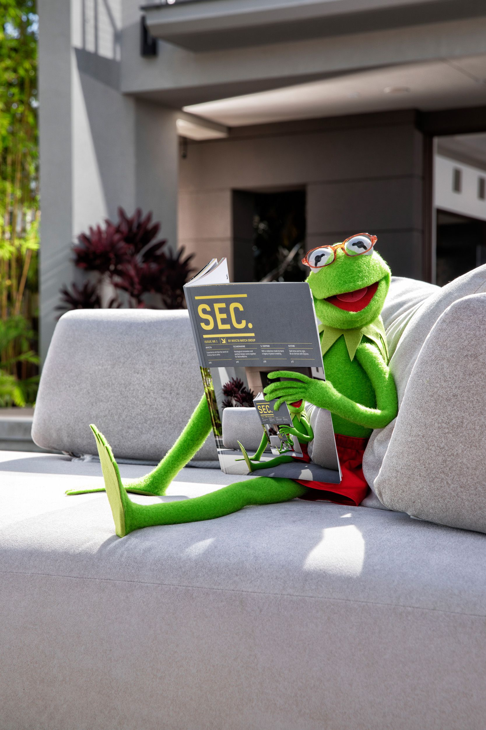 Kermit TuinBank Tijdschrift.JPG