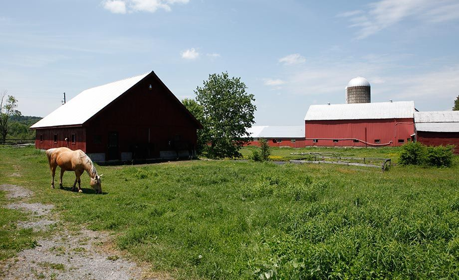1upstate_ny_film_scout_farm_19
