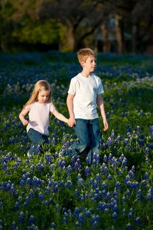 April Bluebonnets - San Antonio,Texas