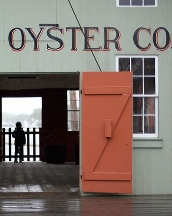 1oyster_co