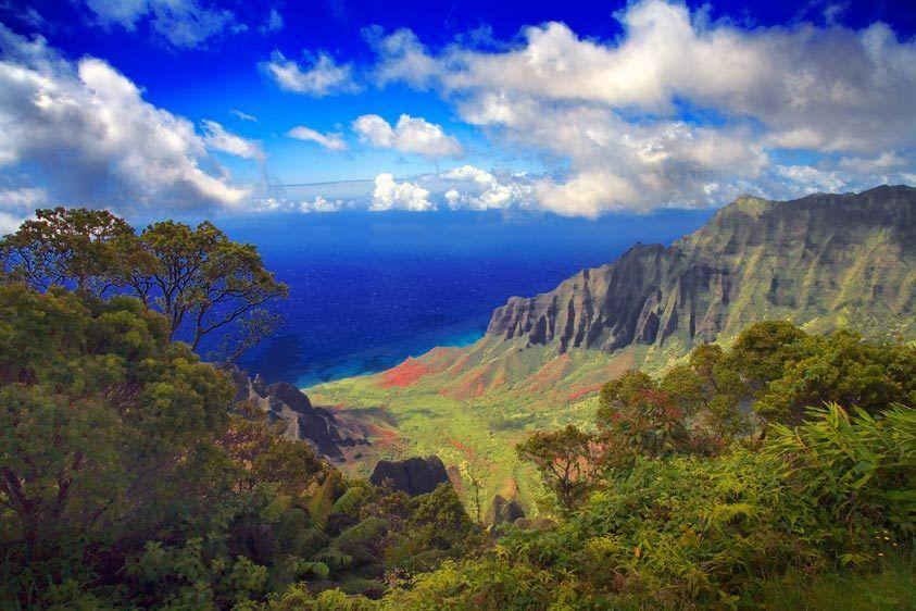 KALALAU VELLEY FROM PU'UO KILAWAIMEA CANYON, KAUAI, HAWAIIIMAGE # 11350