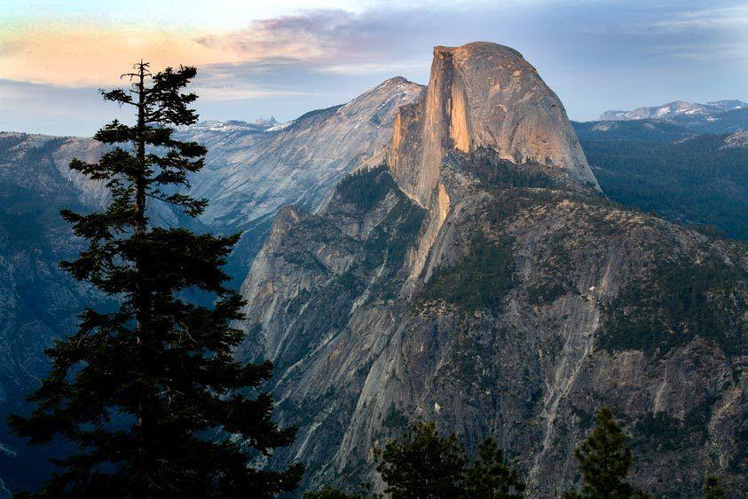 TREE AND HALF DOMEYOSEMITE NATIONAL PARK, CALIFORNIAIMAGE # 11381