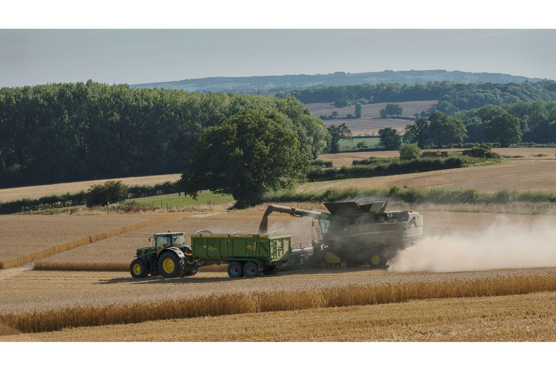 Harvest Time - Ragley Estate