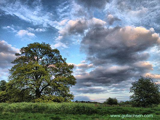 welcombe-hills-facebook.jpg
