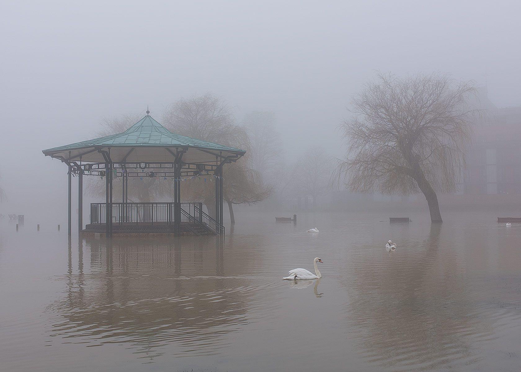 A ghost Band play Swan Lake .