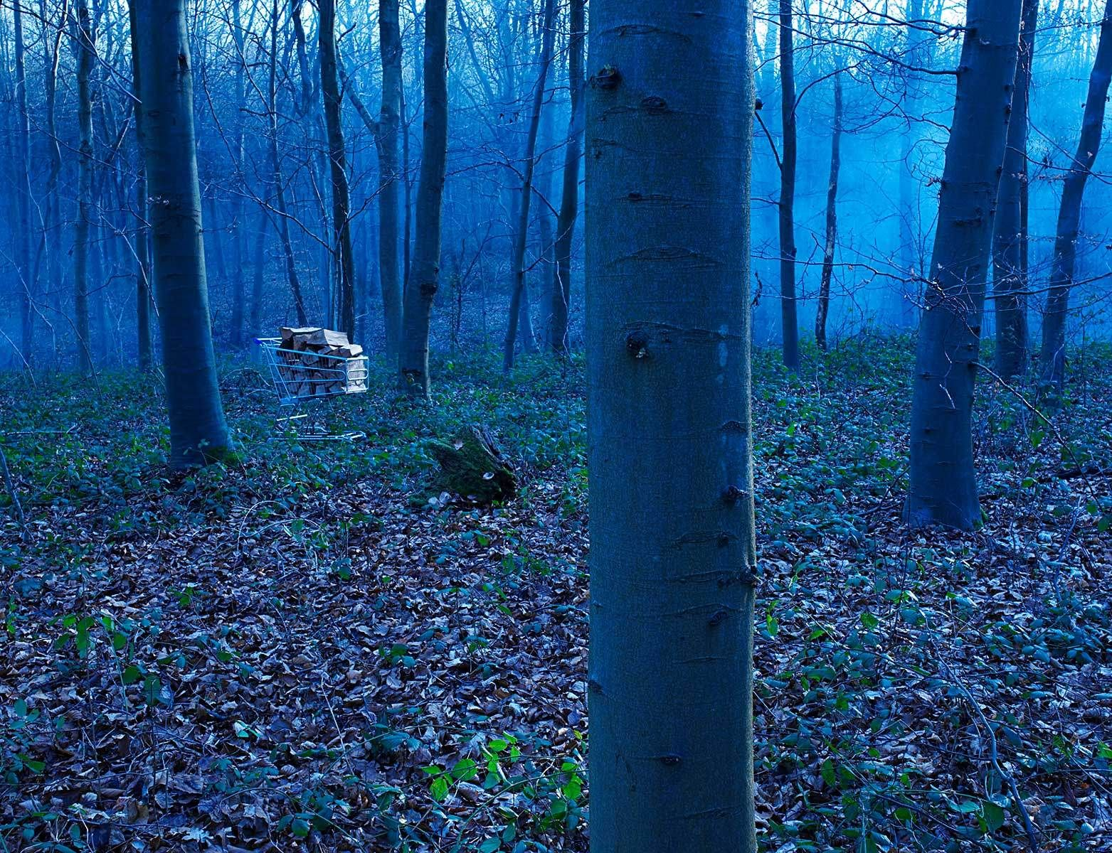Trolley in the woods