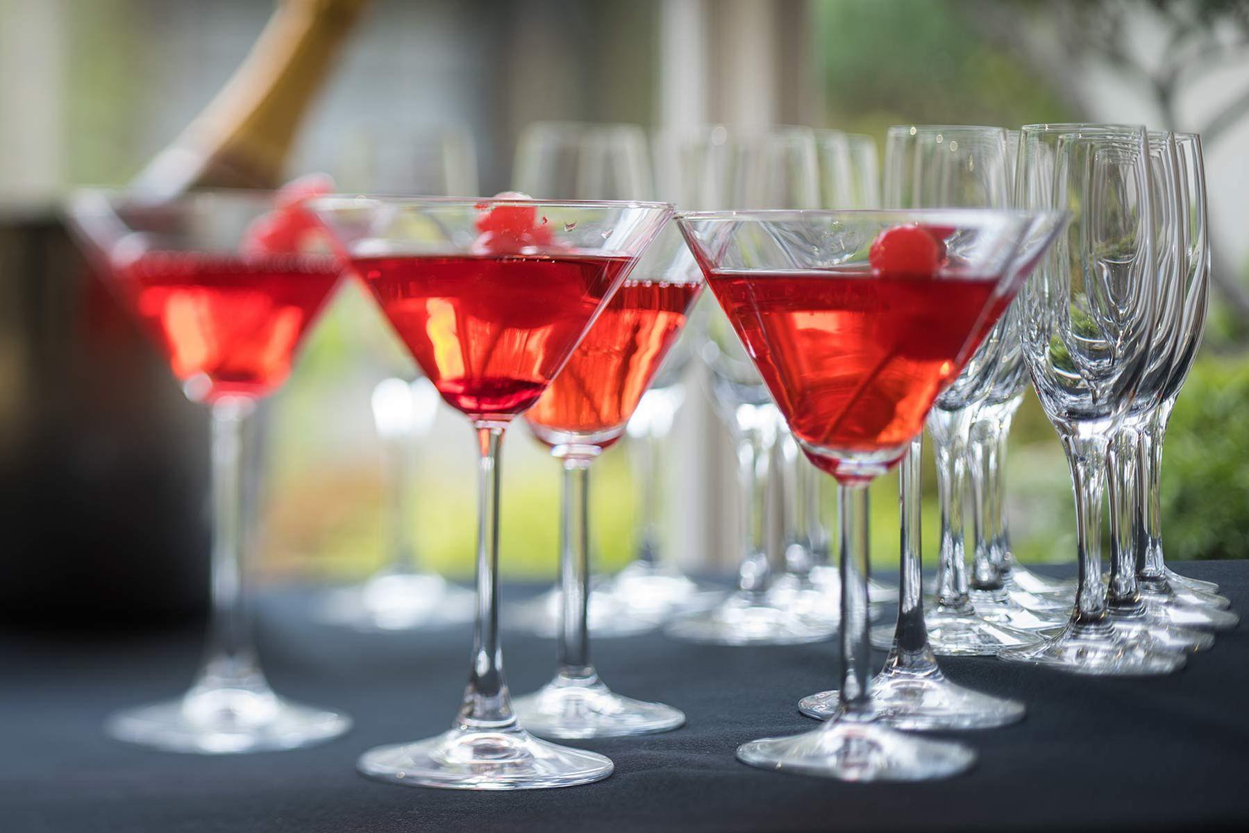 Cocktails at Birmingham Botanical Gardens .