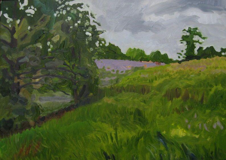 """Sweat Meadow  16"""" x 20"""",  2008"""