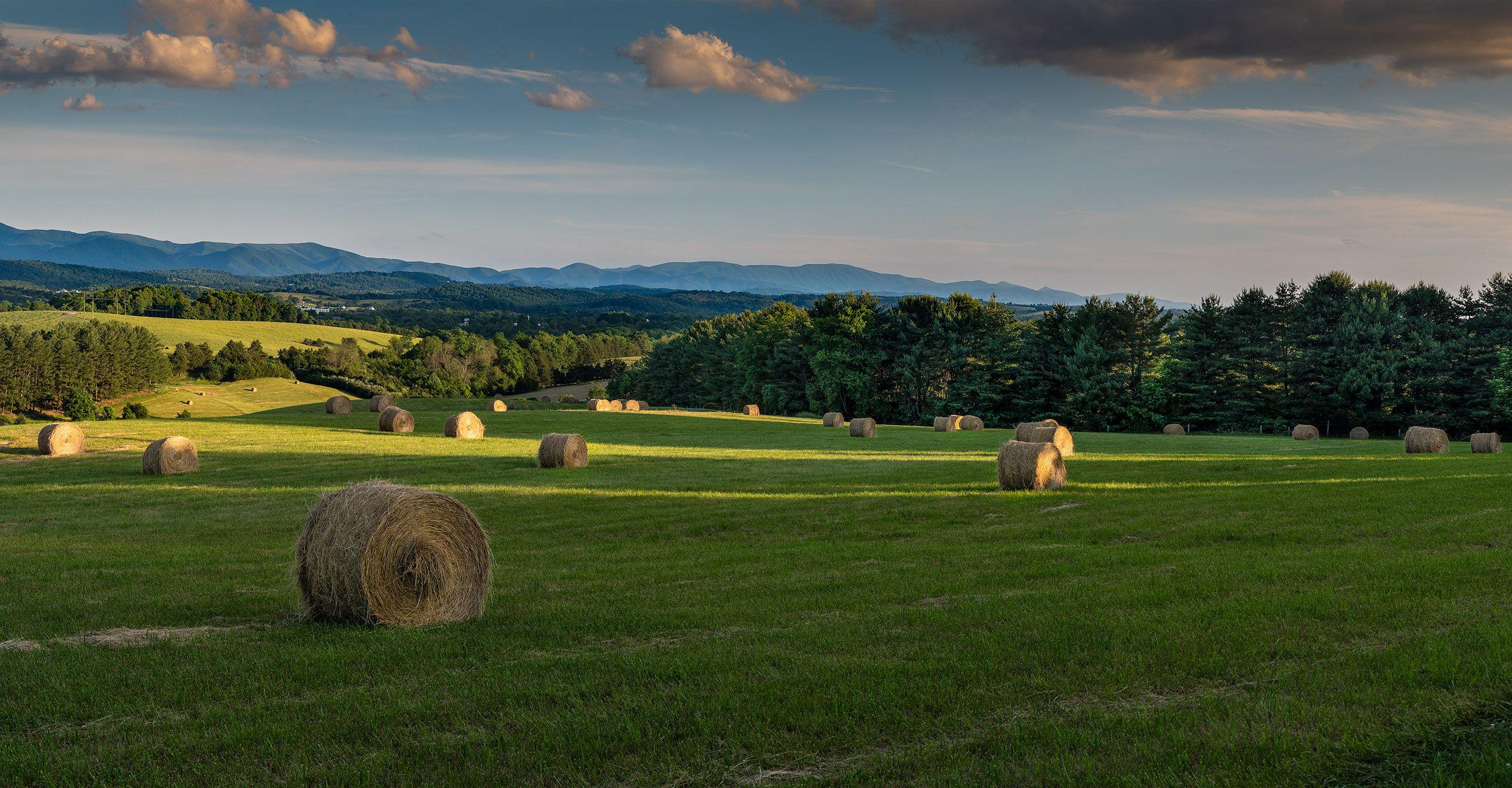 Field of Haybales, Sunset (Rockbridge County).jpg