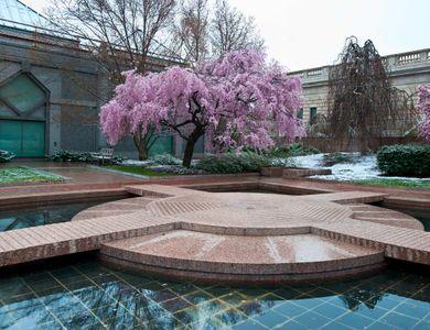 D-11-03-27-PAN-(Moongate-garden).jpg