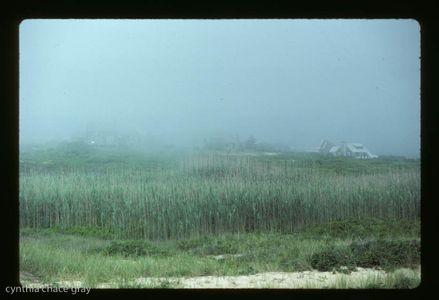 24_0_117_1madaket_fog.jpg