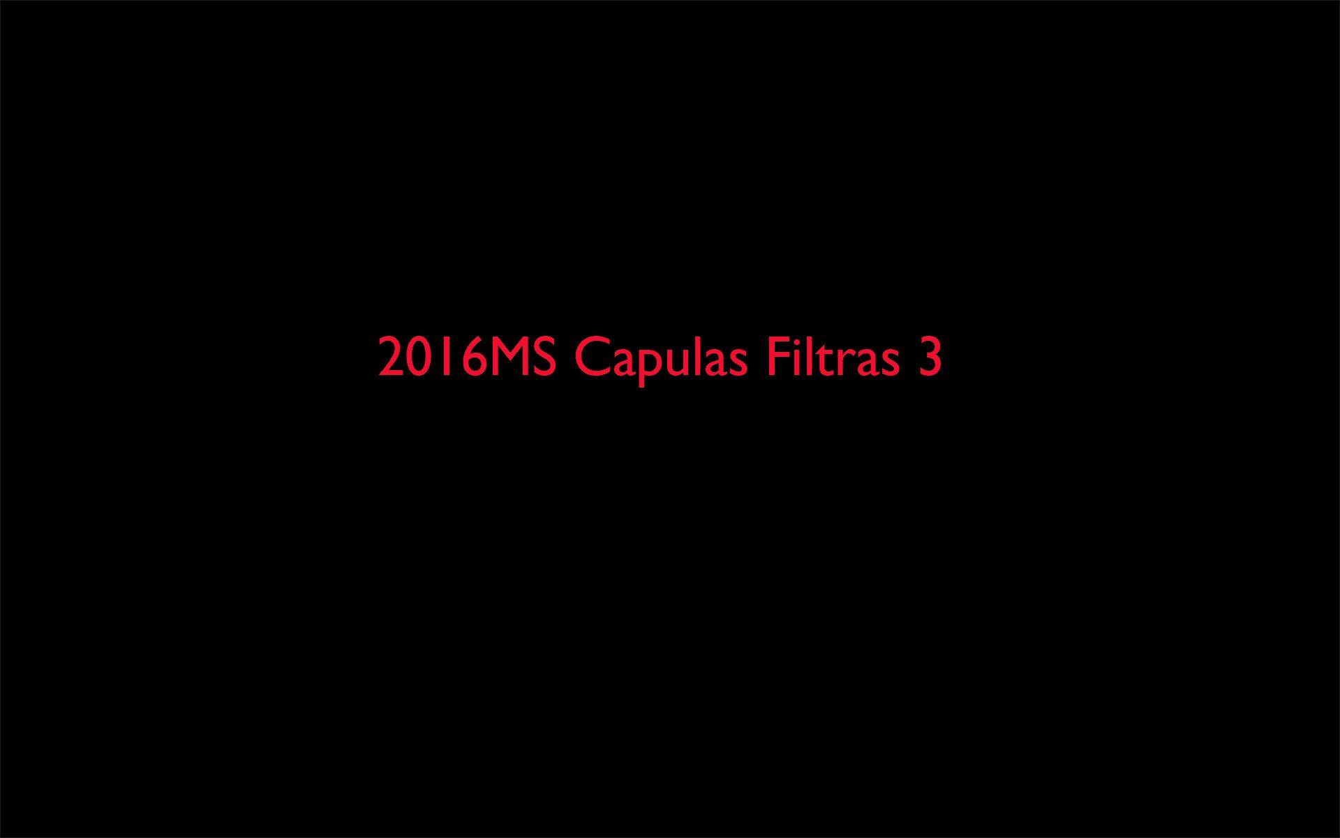 2016MS Capulas Filtras 3.jpg